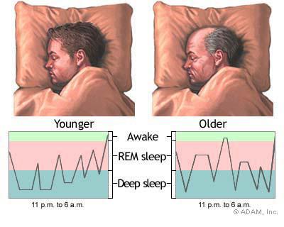 วงจรการนอนหลับ